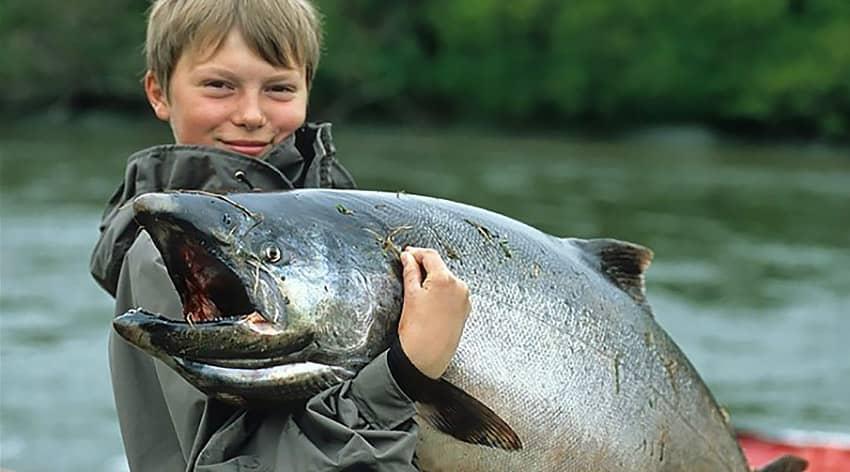 река мокроус рыбалка